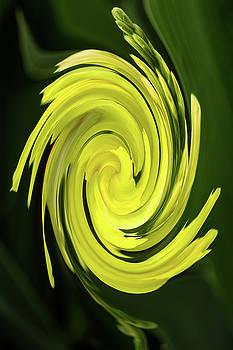Rick Strobaugh - Yellow Swirl