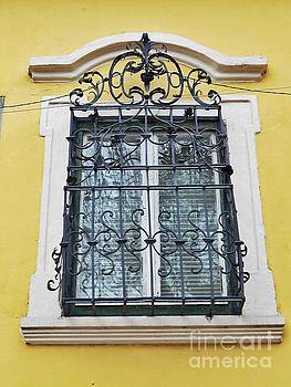 Yellow Wall And A Window Grate  by Erika H