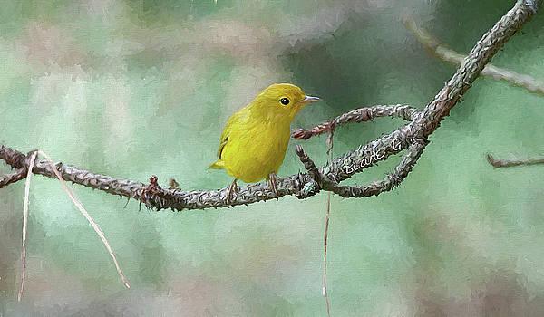 Yellow Warbler by Diane Giurco