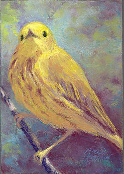 Yellow Warbler by Grace Goodson