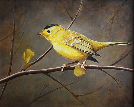 Yellow Warbler by Pam Kaur
