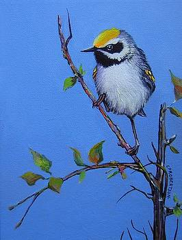 Yellow-winged Warbler by Catherine Robertson