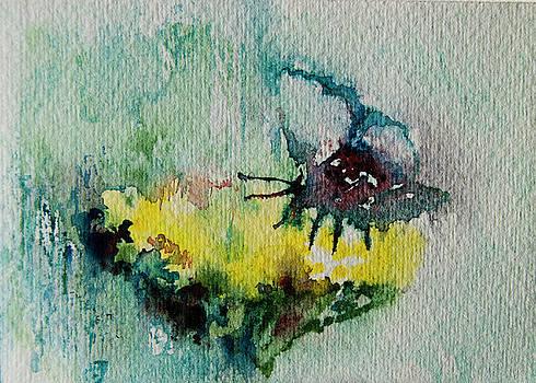 Yellow yarrow by Tatiana Ilieva