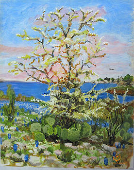 Yellowbuds on the shore by Mark Plimsoll