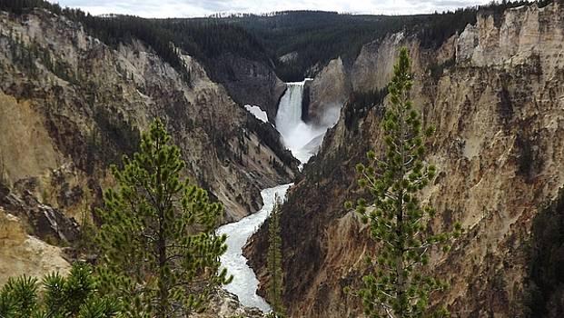Yellowstone 3 D pop by Barkley Simpson