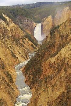 Yellowstone Falls by Ann Sullivan