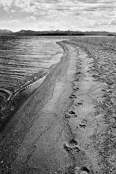 Yellowstone Lake Footsteps by Michelle Oppegard