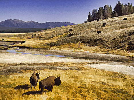 Dennis Cox - Yellowstone Pasture