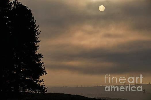 Yellowstone Sunrise by Stephen Schwiesow
