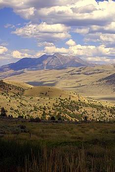 Marty Koch - Yellowstone View