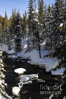 Bob Phillips - Yellowstone Winterscape Four