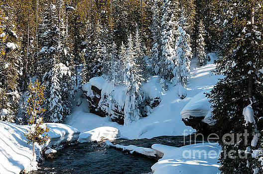 Bob Phillips - Yellowstone Winterscape Six