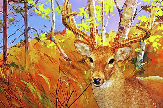 Yes Deer by Jeffery Bennett