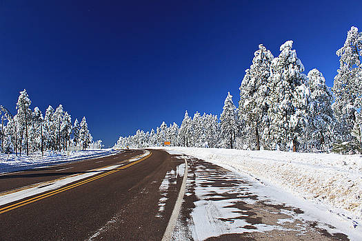 Yes its Arizona by Gary Kaylor