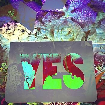 Yes by Steve Swindells