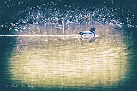 Yesteryear Duck by Erich Grant