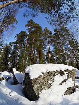 Ylinenjarvi by Jouko Lehto