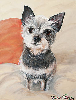 Yoda the Yorkshire Terrier Mix by Karen Dortschy