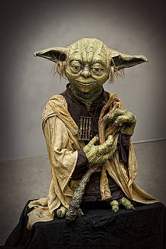 Waldek Dabrowski - Yoda