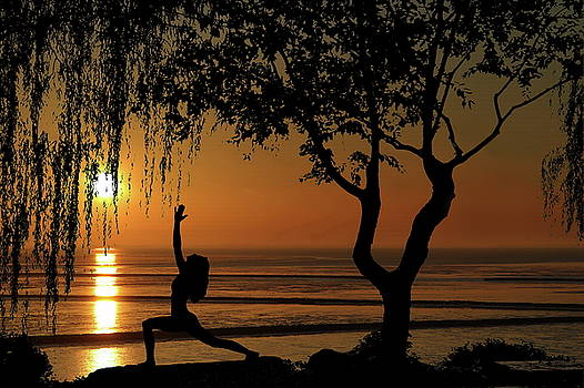 Yoga By the Bay at Sunset by Andrea Kollo