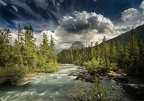 Yoho National Park by William Lee