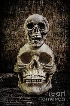 Yorick Stacked Skulls by Edward Fielding