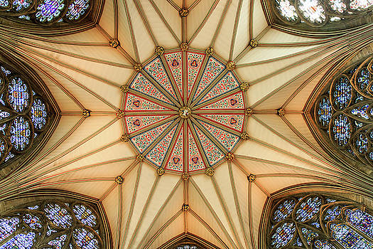 York Minster Ceiling by Emily M Wilson