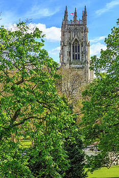 York Minster by Emily M Wilson