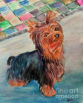 Yorkie Just a pup by Janice Abel