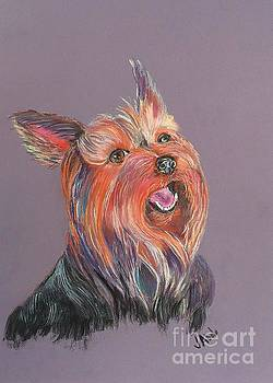 Yorkie Want to Play by Janice Abel