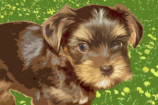 Yorkshire Terrier pattern by Tatiana Tyumeneva
