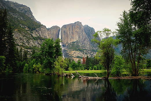 Joyce Dickens - Yosemite A Scenic View To Remember