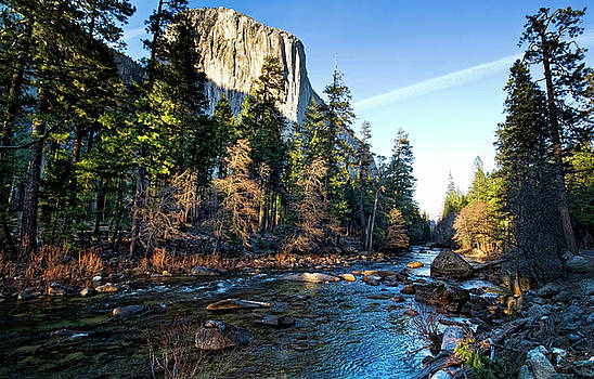 Yosemite Afternoon by Julianne Bradford