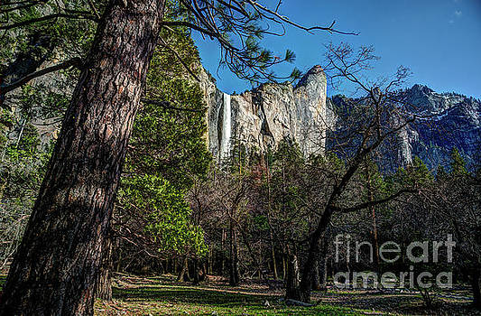 Yosemite Bridalveil Fall by Terry Garvin