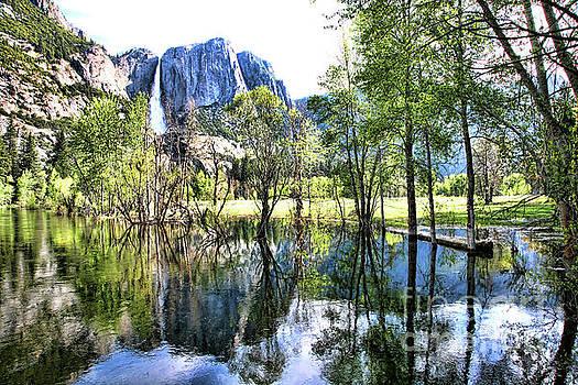 Chuck Kuhn - Yosemite d