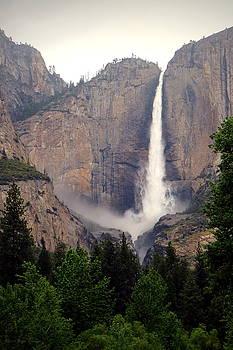 Joyce Dickens - Yosemite Falls Vertical