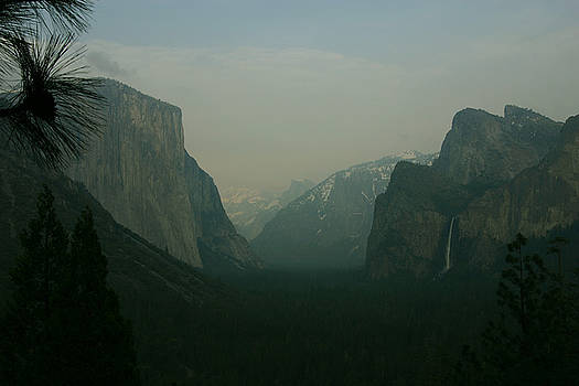 Yosemite In Fog Mist by Rochelle Kassens
