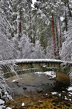Yosemite in Winter by Frank Remar