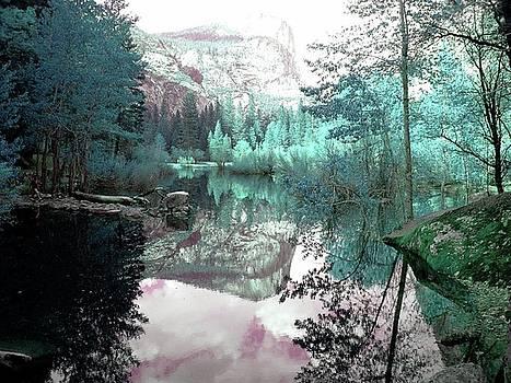 Yosemite Lake by Julie Lourenco