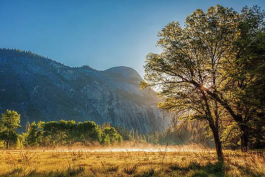 Yosemite Meadow by Andrew Soundarajan