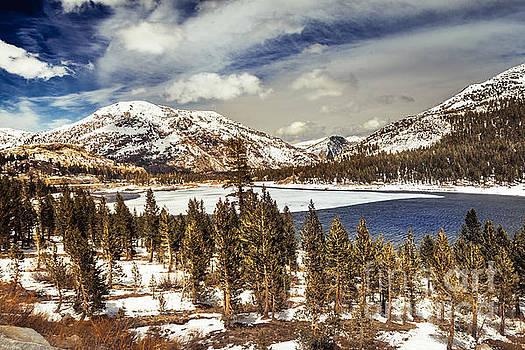 Yosemite Melts into Spring by Jim DeLillo