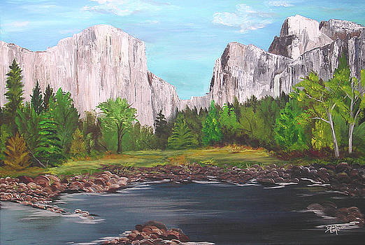 Yosemite National Park by Donna Laplaca