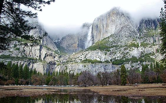 Yosemite National Park Falls by Phyllis Spoor
