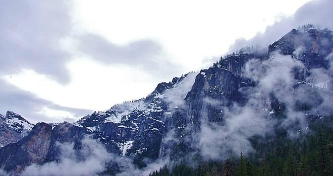 Yosemite by Phyllis Spoor