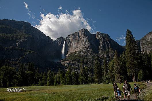 Yosemite Spring by April Bielefeldt