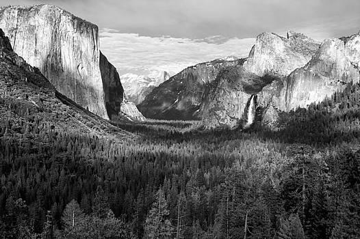Sandra Bronstein - Yosemite Valley