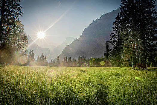 Yosemite Valley Sunrise by Colin Collins