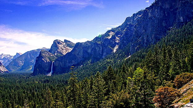 Yosemite Valley with Waterfall by Larry Moore