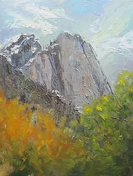 Yosemite View by Thomas Phinnessee