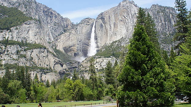 Yosemite Waterfall by Larry Moore